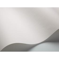 White Light 1702