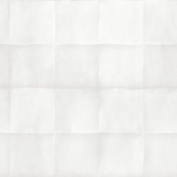 White Light 1701