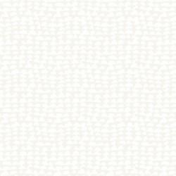 White Light 1709