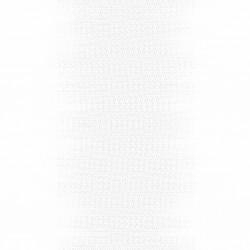 White Light 1710