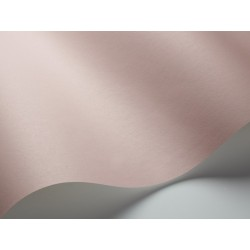 Pigment 7927