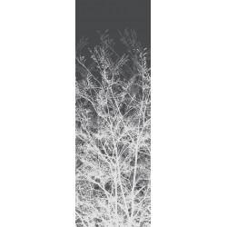 Wood 2480