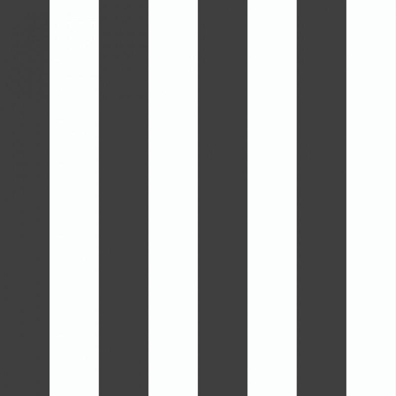 Black & White 6076