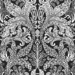 Black & White 6089