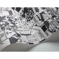 Black & White 6091