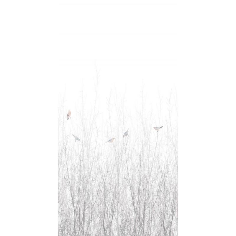 ECO Nature 5283